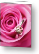 Directly Above Greeting Cards - Marriage Proposal Greeting Card by Elias Kordelakos Photography