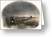 Spontaneous Greeting Cards - Marsh Light Greeting Card by