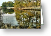 Landscape Framed Prints Greeting Cards - Marsh Stream II Greeting Card by Steven Ainsworth