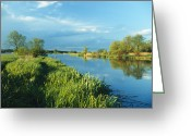 Spring Scenes Greeting Cards - Marshlands In Spring, Unteres Odertal Greeting Card by Norbert Rosing
