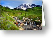 Paintbrush Photo Greeting Cards - Martha Creek Wildflowers Greeting Card by Mike  Dawson