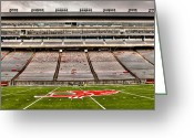 Wsu Cougs Greeting Cards - Martin Stadium at Washington State University Greeting Card by David Patterson