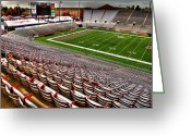 Bleachers Greeting Cards - Martin Stadium at WSU Greeting Card by David Patterson