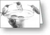 Martini Drawings Greeting Cards - Martini for the birds Greeting Card by Meagan  Visser