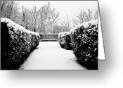 Hedge Greeting Cards - Martyrs Memorial Greeting Card by Chris Barber