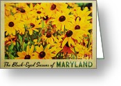 Black Eyed Susans Greeting Cards - Maryland Black-Eyed Susans Greeting Card by Vintage Poster Designs