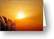 Dune Grass Greeting Cards - Maryland Sunset Greeting Card by Bill Cannon