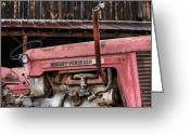 Fauquier County Greeting Cards - Massey Ferguson Greeting Card by JC Findley