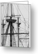 Mayflower Greeting Cards - Masts Greeting Card by Hideaki Sakurai