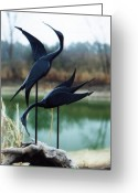 Nature Sculpture Greeting Cards - Mating Dance Greeting Card by Matt Cormons