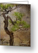 Pine Tree Greeting Cards - Matsu Greeting Card by Eena Bo
