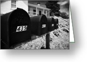 Tenn Greeting Cards - matt black american private mailboxes in front of houses Lynchburg tennessee usa Greeting Card by Joe Fox