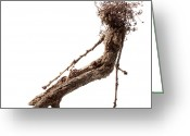 Nudes Sculpture Greeting Cards - Matutinal Greeting Card by Adam Long