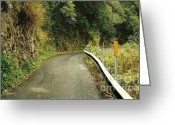 Country Lanes Photo Greeting Cards - Maui Highway Greeting Card by Marilyn Wilson