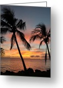 ; Maui Greeting Cards - Maui Sunset Palms Greeting Card by Kelly Wade