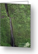 Cavern Greeting Cards - Maui Waterfall Greeting Card by Jim Chamberlain