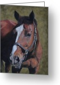 Cowboy Pastels Greeting Cards - Max Greeting Card by Joanne Grant