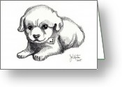 Puppies Greeting Cards - Maya 3 Greeting Card by John Keaton