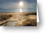 Mayo Greeting Cards - MayoBeach Greeting Card by Dapixara Art