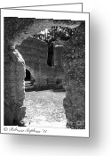 Georgia Greeting Cards - McIntosh Sugar Mill Tabby Ruins  Greeting Card by Rebecca  Stephens
