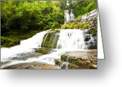 Dark Moss Green Photo Greeting Cards - McLean Falls in the Catlins of South New Zealand Greeting Card by Ulrich Schade