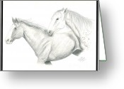Horse Drawings Greeting Cards - Me First Greeting Card by Joette Snyder