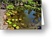Hawaiian Pond Greeting Cards - Meditation Pond in Waimea Greeting Card by Bette Phelan