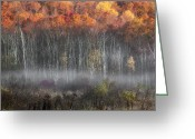 Meeker Greeting Cards - Meeker Swamp Greeting Card by Bill  Wakeley