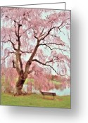 Easter Flowers Greeting Cards - Meet Me Under The Pink Blooms Beside The Pond - Holmdel Park Greeting Card by Angie McKenzie