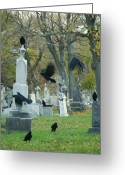Passerines Greeting Cards - Meet Up Greeting Card by Gothicolors With Crows