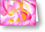 Roses Petals Greeting Cards - Mel Greeting Card by Gwyn Newcombe