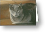 Whiskers Greeting Cards - Melody Sleeps Through Her Stories Greeting Card by Karen Coombes