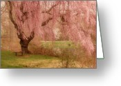 Pastels. Greeting Cards - Memories - Holmdel Park Greeting Card by Angie McKenzie