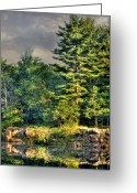 Swimming Hole Greeting Cards - Memories and Reflections Greeting Card by Thomas Young