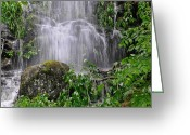 Flooding Greeting Cards - Mendenhall Glacier flooding waterfall Juneau Alaska 1542 Greeting Card by Michael Bessler