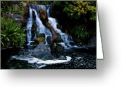 Clayton Photo Greeting Cards - Mental Vacation Greeting Card by Clayton Bruster