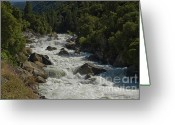 Spring Floods Greeting Cards - Merced River in Yosemite Greeting Card by Tim Mulina