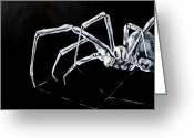 Black Widow Painting Greeting Cards - Merry Widow Greeting Card by Kathryn M Bennett