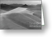 Mountains Of Sand Greeting Cards - Mesquite Dunes 11 Greeting Card by Bob Christopher