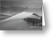 Mountains Of Sand Greeting Cards - Mesquite Dunes 7 Greeting Card by Bob Christopher