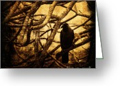 Crow Digital Art Greeting Cards - Messenger Greeting Card by Andrew Paranavitana