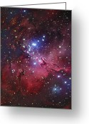 Interstellar Clouds Photo Greeting Cards - Messier 16, The Eagle Nebula In Serpens Greeting Card by Robert Gendler