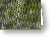 Banister Greeting Cards - Metal fence Greeting Card by Mats Silvan