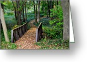 Jogging Photo Greeting Cards - Metroparks Pathway Greeting Card by Robert Harmon