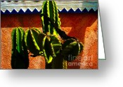 Florida House Greeting Cards - Mexican Style  Greeting Card by Susanne Van Hulst