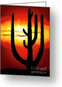 Heaven Digital Art Greeting Cards - Mexico sunset Greeting Card by Michal Boubin