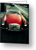 Northwest Photography Greeting Cards - Mg Greeting Card by Cathie Tyler