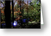 Fall Greeting Cards - Michigan Fall Colors 1 Greeting Card by Scott Hovind