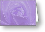 Cindy Longhini Greeting Cards - Micro Lavender Rose Greeting Card by Cindy Lee Longhini