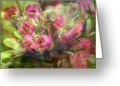 Beautiful Flowers Greeting Cards - Mid Summer Dream Greeting Card by Kathy Bucari
